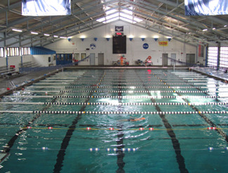 About 39 university of florida swimming 39 into our swimming pools into our revelation for University of york swimming pool