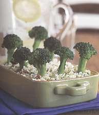 Mollie Katzen's The Enchanted Broccoli Forest