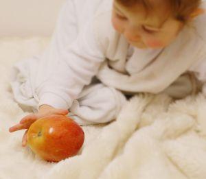 alices_apple_.jpg