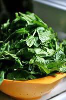 spinach-a.jpg