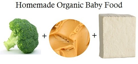 homemade-organic-baby-food-dish