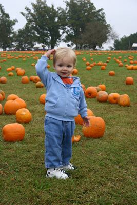 halloween pumpkin safety, pumpkin patch safety, baby costume, baby halloween, Baby Halloween costume, baby safe halloween treats, best Baby Halloween costume, candy for babies, halloween baby, halloween candy, halloween costume, halloween for baby