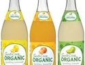 Safe organic fizzy drinks for pregnancy