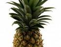 Sweet pineapple pregnancy smoothie