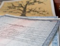 Who's your daddy? What you need to know about birth certificates